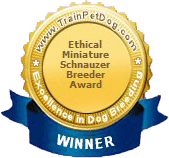 Ethical Miniature Schnauzer Breeder Award Winnder